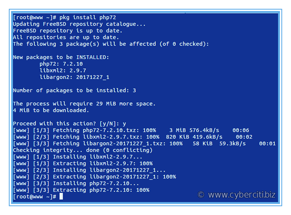 FreeBSD install PHP 7.2 with FPM for Nginx with pkg command