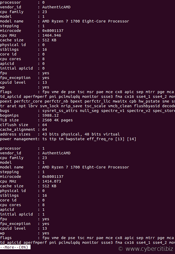 Command To Check Number Of CPU Cores On Linux