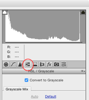 Seven Reasons to Use the Camera Raw Filter in Adobe